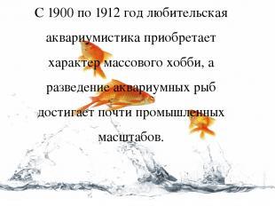 С 1900 по 1912 год любительская аквариумистика приобретает характер массового хо