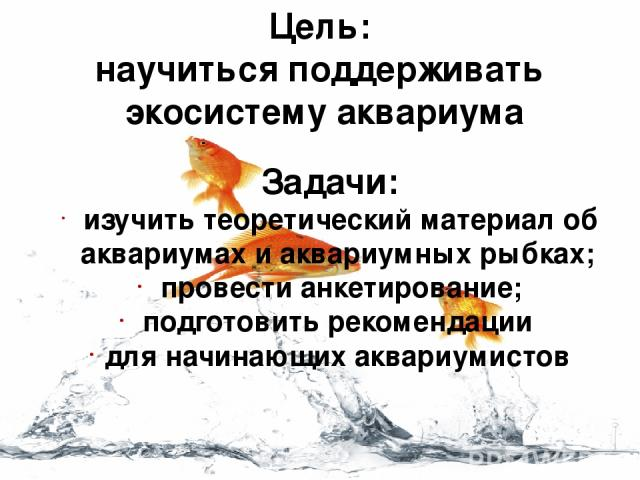 Цель: научиться поддерживать экосистему аквариума Задачи: изучить теоретический материал об аквариумах и аквариумных рыбках; провести анкетирование; подготовить рекомендации для начинающих аквариумистов