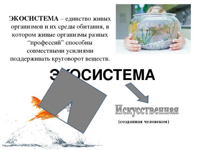 """ЭКОСИСТЕМА – единство живых организмов и их среды обитания, в котором живые организмы разных """"профессий"""" способны совместными усилиями поддерживать круговорот веществ. (созданная человеком) ЭКОСИСТЕМА"""