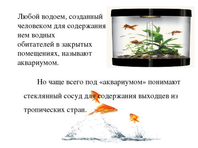 Любой водоем, созданный человеком для содержания в нем водных обитателей в закрытых помещениях, называют аквариумом. Но чаще всего под «аквариумом» понимают стеклянный сосуд для содержания выходцев из тропических стран.