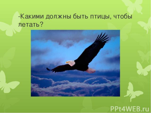 -Какими должны быть птицы, чтобы летать?