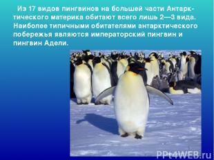 Из 17 видов пингвинов на большей части Антарк-тического материка обитают всего л