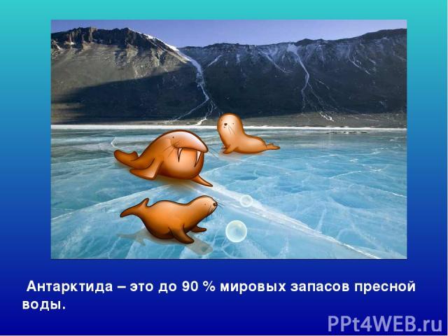 Антарктида – это до 90 % мировых запасов пресной воды. Антарктида – это до 90 % мировых запасов пресной воды.
