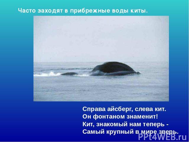 Справа айсберг, слева кит. Он фонтаном знаменит! Кит, знакомый нам теперь - Самый крупный в мире зверь. Часто заходят в прибрежные воды киты. Справа айсберг, слева кит. Он фонтаном знаменит! Кит, знакомый нам теперь - самый крупный в мире зверь. Ч…