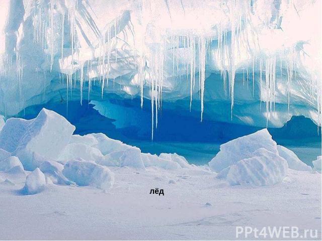 лёд Лёд.