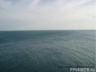 Моря и океаны соленые и огромные! Моря и океаны соленые и огромные!
