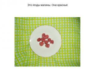 Это ягоды малины. Они красные