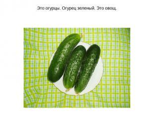 Это огурцы. Огурец зеленый. Это овощ.