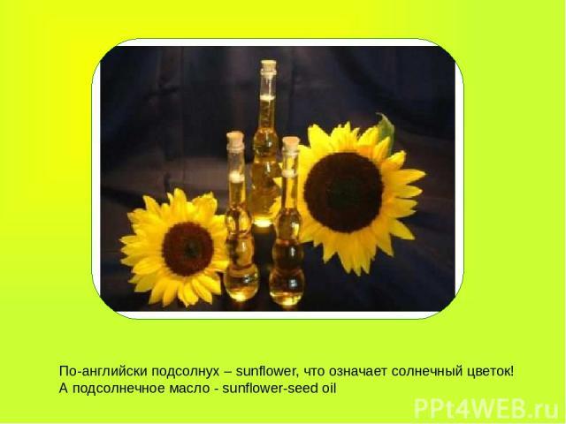 По-английски подсолнух – sunflower, что означает солнечный цветок! А подсолнечное масло - sunflower-seed oil