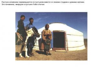 Пастухи-кочевники перемещаются по пустыням вместе со своими стадами и домами-юрт