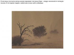 В песчаных пустынях ветер иногда поднимает песчаные бури – воздух наполняется ле