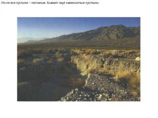 Но не все пустыни – песчаные. Бывают ещё каменистые пустыни. Но не все пустыни –