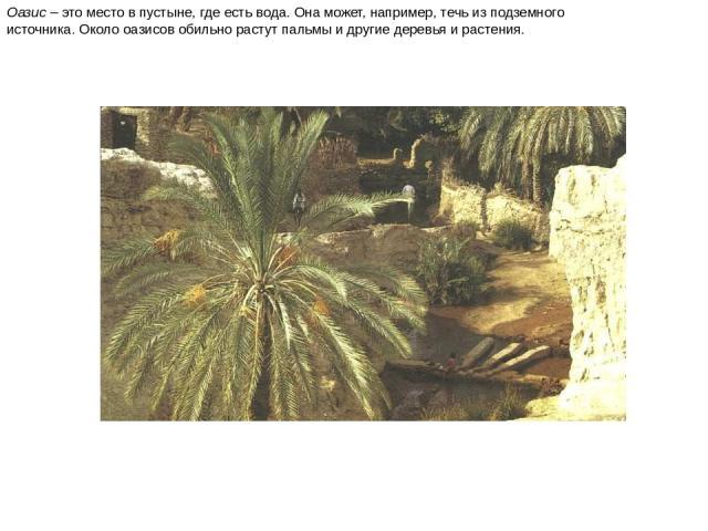 Оазис – это место в пустыне, где есть вода. Она может, например, течь из подземного источника. Около оазисов обильно растут пальмы и другие деревья и растения. Оазис – это место в пустыне, где есть вода. Она может, например, течь из подземного источ…