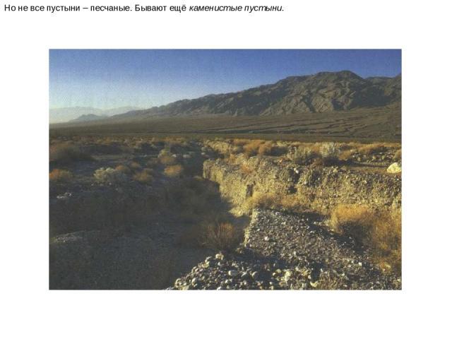 Но не все пустыни – песчаные. Бывают ещё каменистые пустыни. Но не все пустыни – песчаные. Бывают ещё каменистые пустыни.