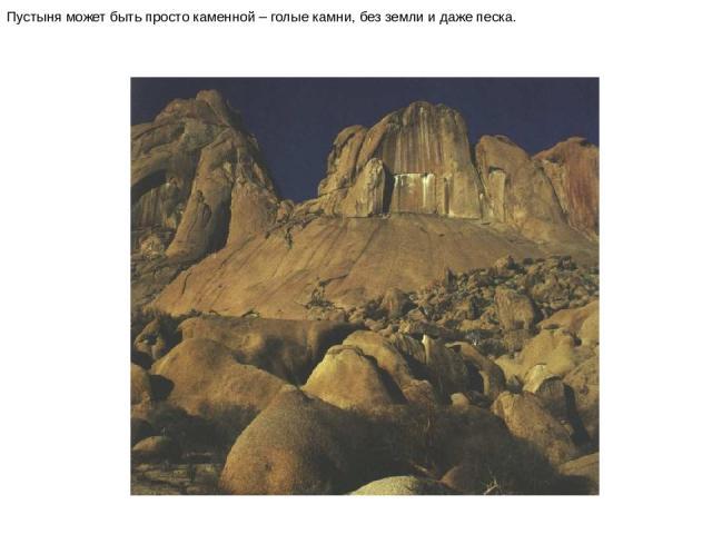 Пустыня может быть просто каменной – голые камни, без земли и даже песка. Пустыня может быть просто каменной – голые камни, без земли и даже песка.