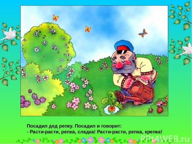 Посадил дед репку. Посадил и говорит: - Расти-расти, репка, сладка! Расти-расти, репка, крепка! Посадил дед репку. Посадил и говорит: - Расти-расти, репка, сладка! Расти-расти, репка, крепка!