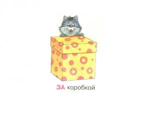 За коробкой