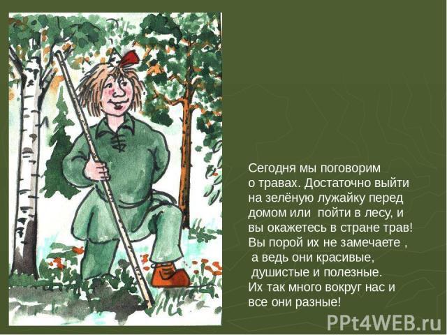 Сегодня мы поговорим о травах. Достаточно выйти на зелёную лужайку перед домом или пойти в лесу, и вы окажетесь в стране трав! Вы порой их не замечаете , а ведь они красивые, душистые и полезные. Их так много вокруг нас и все они разные! Сегодня мы …