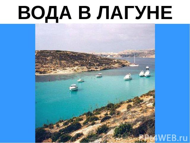 ВОДА В ЛАГУНЕ