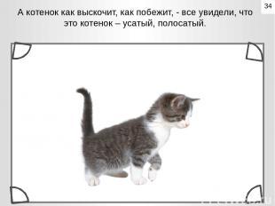А котенок как выскочит, как побежит, - все увидели, что это котенок – усатый, по
