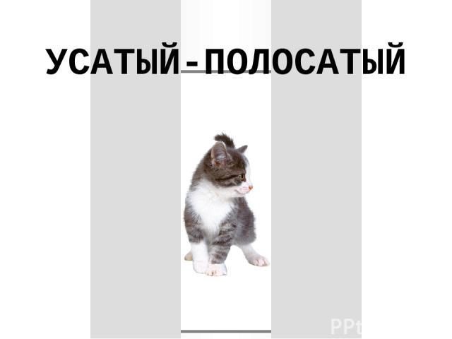 УСАТЫЙ-ПОЛОСАТЫЙ