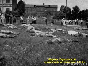 Жертвы Харьковской чрезвычайной комиссии. 1919 г.