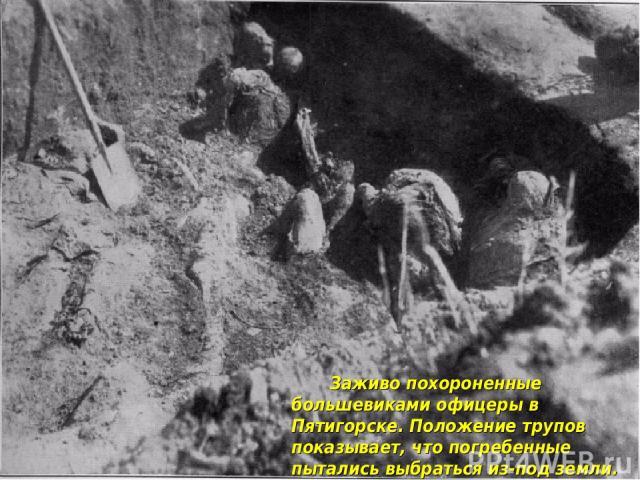 Заживо похороненные большевиками офицеры в Пятигорске. Положение трупов показывает, что погребенные пытались выбраться из-под земли. 1919 г.