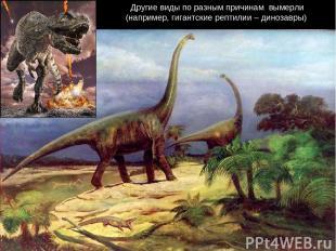 Другие виды по разным причинам вымерли (например, гигантские рептилии – динозавр