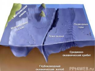 Рельеф дна Мирового океана Материковая отмель Материковый склон Ложе океана Глуб