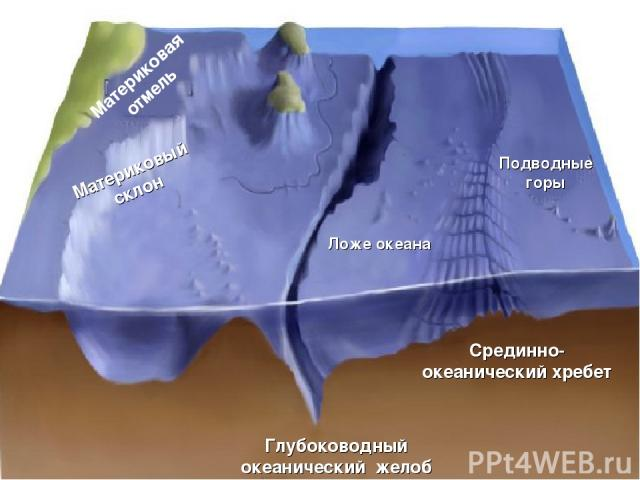 Рельеф дна Мирового океана Материковая отмель Материковый склон Ложе океана Глубоководный океанический желоб Подводные горы Срединно- океанический хребет