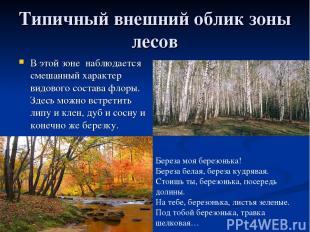 Типичный внешний облик зоны лесов В этой зоне наблюдается смешанный характер вид