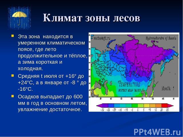 Климат зоны лесов Эта зона находится в умеренном климатическом поясе, где лето продолжительное и тёплое, а зима короткая и холодная. Средняя t июля от +16° до +24°С, а в январе от -8 ° до -16°С. Осадков выпадает до 600 мм в год в основном летом, увл…