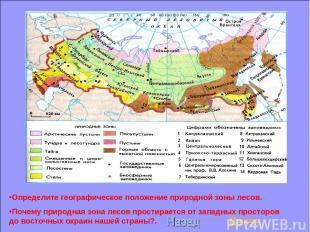 Определите географическое положение природной зоны лесов. Почему природная зона