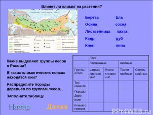 Влияет ли климат на растения? Какие выделяют группы лесов в России? В каких клим