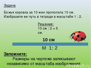 Задача Божья коровка за 10 мин проползла 10 см. Изобразите ее путь в тетради в м