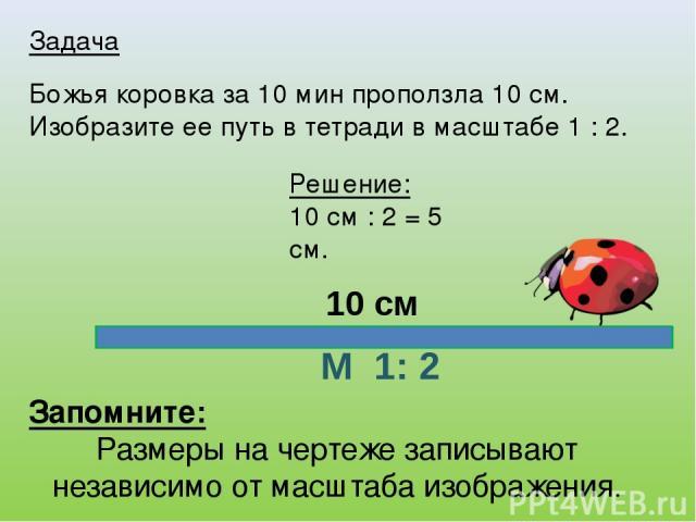 Задача Божья коровка за 10 мин проползла 10 см. Изобразите ее путь в тетради в масштабе 1 : 2. Запомните: Размеры на чертеже записывают независимо от масштаба изображения. Решение: 10 см : 2 = 5 см. М 1: 2 10 см