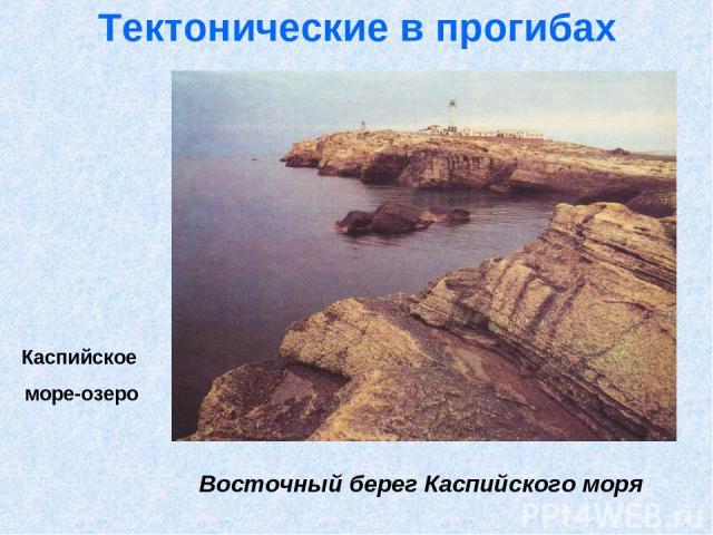 Тектонические в прогибах Каспийское море-озеро Восточный берег Каспийского моря
