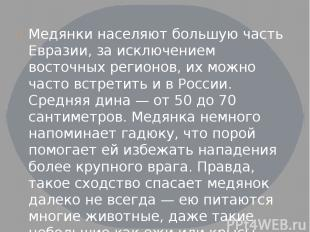 Медянки населяют большую часть Евразии, за исключением восточных регионов, их мо