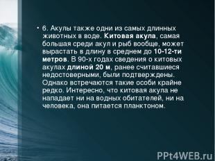 6. Акулы также одни из самых длинных животных в воде. Китовая акула, самая больш