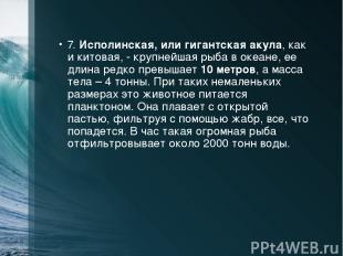 7. Исполинская, или гигантская акула, как и китовая, - крупнейшая рыба в океане,