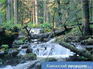 Может ли человек уменьшить своё воздействие на природу? Очистные сточных вод Кав