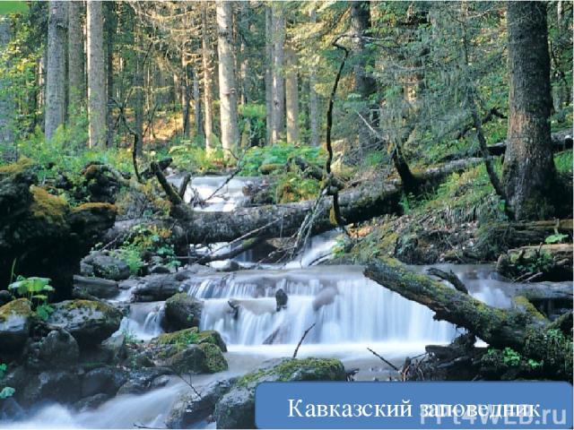 Может ли человек уменьшить своё воздействие на природу? Очистные сточных вод Кавказский заповедник