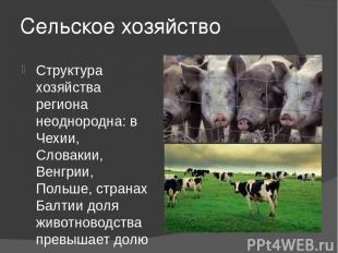 Сельское хозяйство Структура хозяйства региона неоднородна: в Чехии, Словакии, В