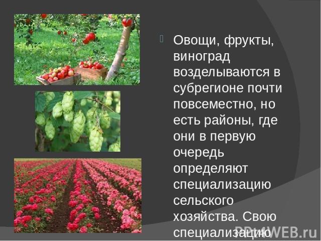 Овощи, фрукты, виноград возделываются в субрегионе почти повсеместно, но есть районы, где они в первую очередь определяют специализацию сельского хозяйства. Свою специализацию эти страны и районы имеют также по ассортименту продукции. Например, Венг…