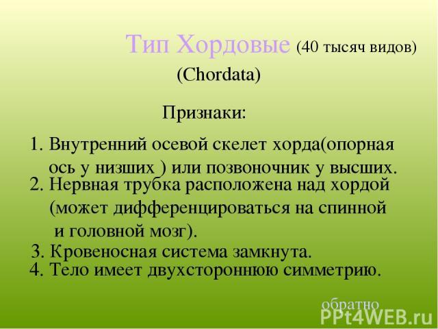 Тип Хордовые (Chordata) 4. Тело имеет двухстороннюю симметрию. (40 тысяч видов) обратно 1. Внутренний осевой скелет хорда(опорная ось у низших ) или позвоночник у высших. Признаки: 2. Нервная трубка расположена над хордой (может дифференцироваться н…