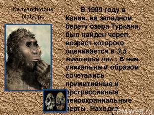 Kenyanthropus platyops В 1999 году в Кении, на западном берегу озера Туркана, бы
