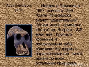"""Australopithecus garhi Найден в Эфиопии в 1997, описан в 1999. """"Garhi"""" по-афарск"""