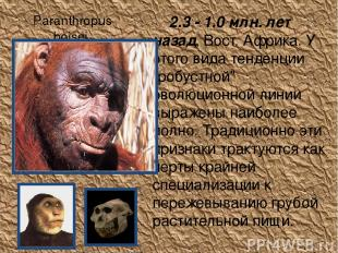 Paranthropus boisei 2.3 - 1.0 млн. лет назад, Вост. Африка. У этого вида тенден