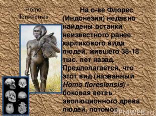 Homo floresiensis На о-ве Флорес (Индонезия) недавно найдены останки неизвестног