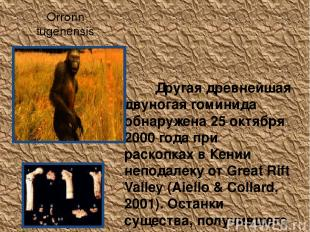Orrorin tugenensis Другая древнейшая двуногая гоминида обнаружена 25 октября 200